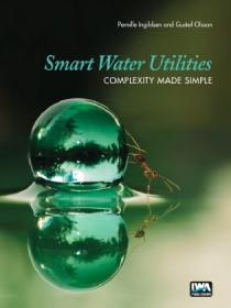 Smart Water Utilities